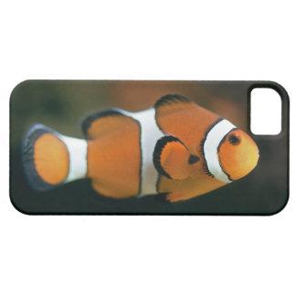 Nemo iPhone 5 Case-Mate Case