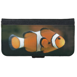Nemo Phone Wallet Case (all models)