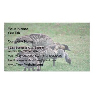 Nene Business Card Template