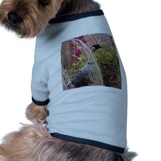 Nene Goose Pet Clothes