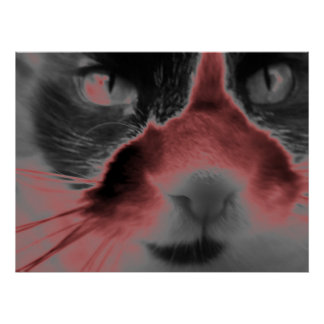 Neon Cat - Red Poster