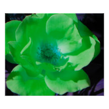 """""""Neon Collection"""" Green Rose Wall Decor Poster"""