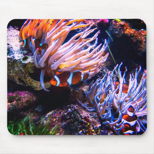 Neon Colours Clown Fishes Mouse Pad