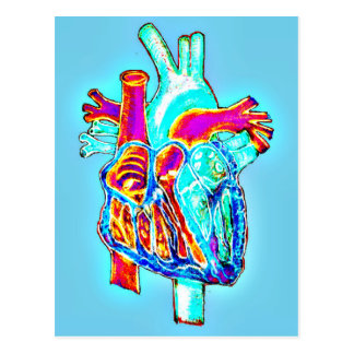 Neon Hand Drawn Anatomical Heart Postcard