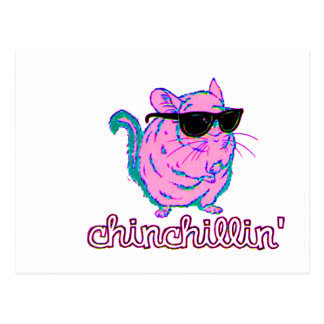 Neon Pink Chinchillin Chinchilla Postcard