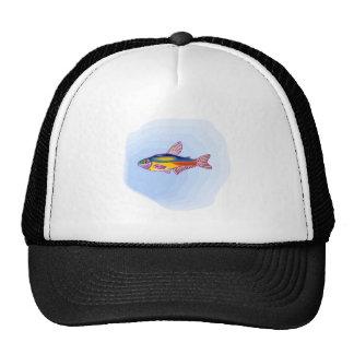 Neon Tetra Fish Mesh Hats