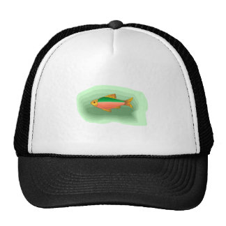 Neon Tetra Fish Hats