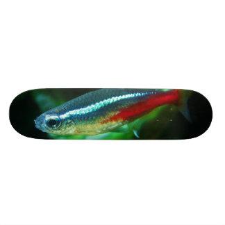 Neon Tetra Fish Paracheirodon Innesi Skateboard