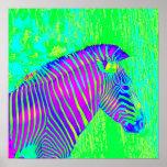 neon zebra - green,blue and purple retro poster