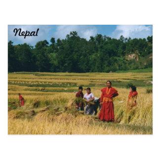 Nepal Family postcard