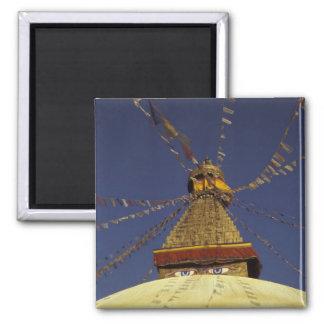 Nepal, Kathmandu. Under prayer flags, watchful Magnet