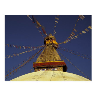 Nepal, Kathmandu. Under prayer flags, watchful Postcard