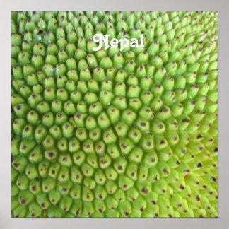 Nepalese Jackfruit Poster
