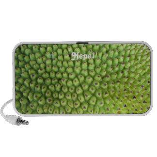 Nepalese Jackfruit iPod Speakers