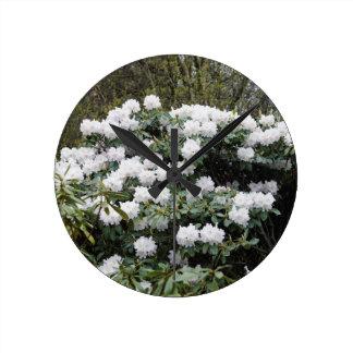 Nepalese Viburnum Grandiflorum 'Snow White' flower Round Wallclocks