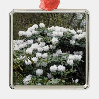 Nepalese Viburnum Grandiflorum 'Snow White' flower Ornament