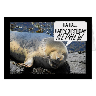 Nephew Birthday card with laughing seal pup