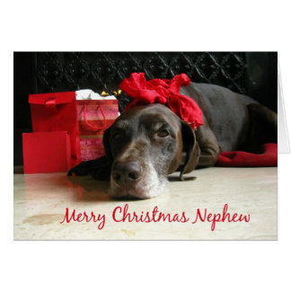 Nephew merry christmas pointer and gifts at firepl greeting cards