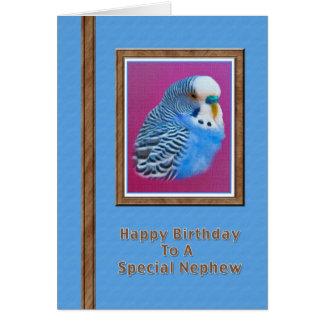 Nephew's Birthday Card with Blue Parakeet