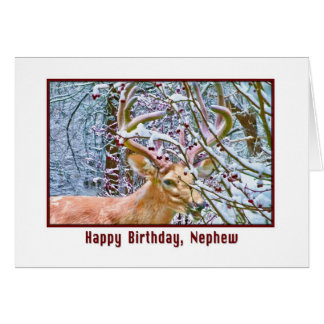Nephew's Birthday Card with Deer and Crab Apples