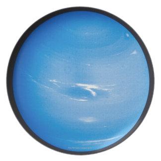 Neptune 2 plate