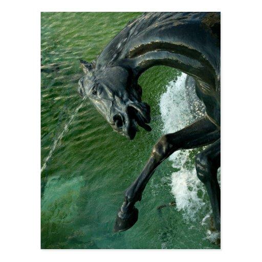 Neptune Fountain, Washington DC Post Card