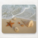Neptune's Gifts (Shells) Mouse Pad