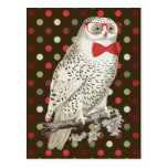 Nerdy Vintage Snowy Owl Postcard