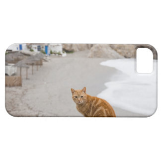 nerja malaga andalusia spain iPhone 5 cases
