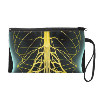 Nerves of the Lower Back Wristlet Purse
