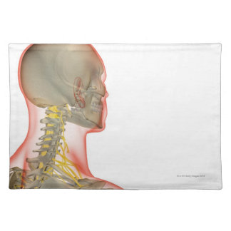Nerves of the Neck 2 Placemat