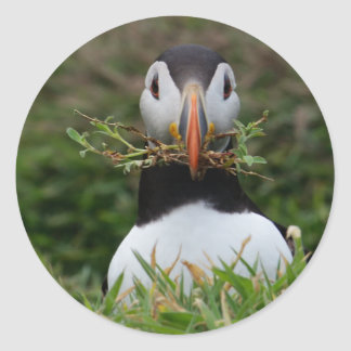 Nest Builder Puffin Classic Round Sticker