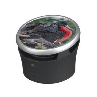 Nesting Frigate Bird pair Bluetooth Speaker