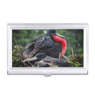 Nesting Frigate Bird pair Business Card Holder