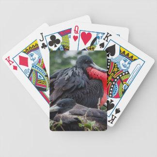 Nesting Frigate Bird pair Deck Of Cards