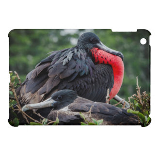 Nesting Frigate Bird pair iPad Mini Case