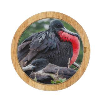 Nesting Frigate Bird pair Round Cheese Board