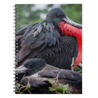 Nesting Frigate Bird pair Spiral Note Book