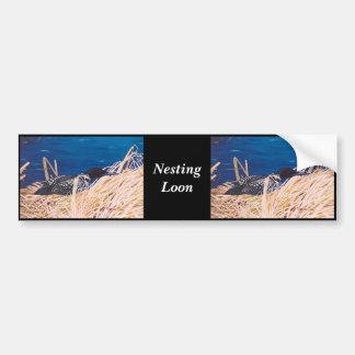 Nesting Loon Bumper Sticker