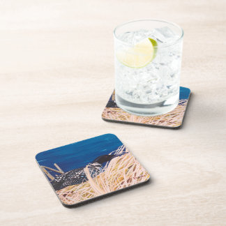 Nesting Loon Coasters