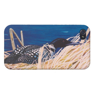Nesting Loon IPhone 4 Case
