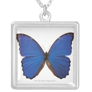Nestira Marpho butterfly Silver Plated Necklace