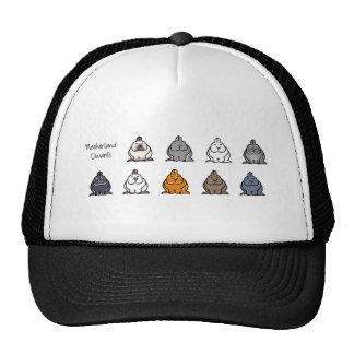Netherland Dwarf Colours Hat