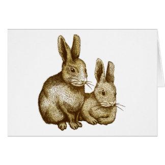 Netherland Dwarf Rabbit グリーティングカード