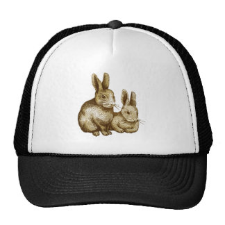 Netherland Dwarf Rabbit 帽子