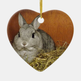 Netherland Dwarf Rabbit Ceramic Heart Decoration