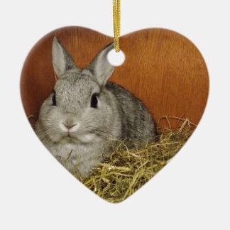 Netherland Dwarf Rabbit Christmas Ornament