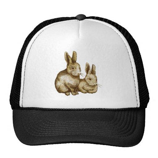 Netherland Dwarf: Rabbit Trucker Hats