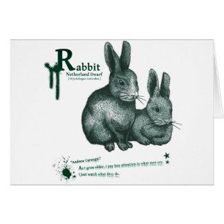 Netherland Dwarf Rabbit - ink カード