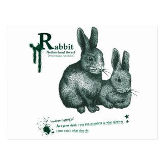 Netherland Dwarf Rabbit - ink 葉書き